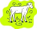 boerderij_155