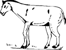 boerderij_15