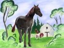 boerderij_16
