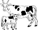 boerderij_17
