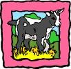 boerderij_66