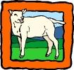 boerderij_67