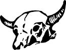 bull_skull_2