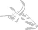 bull_watermark