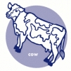 cow_icon