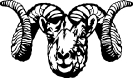 Dall_Sheep_Ram_stylized
