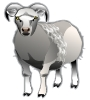 sheep_chrome
