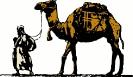 camel_led
