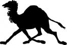 camel_running_silhouette
