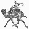 camel_w_rider