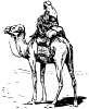 camel_with_rider_BW