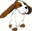 big_earred_dog
