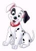 hond01