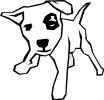 patch_eyed_dog_BW