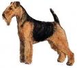 Welsh_Terrier
