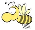 bee_big_nose_2