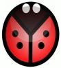 ladybug_abstracted