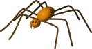 large_brown_spider