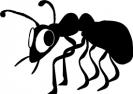 nervous_bug