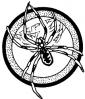 spider__black_widow