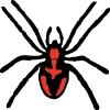 spider_black_red_spots
