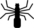 spider_silhoette_1