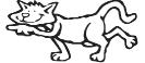 katten_10