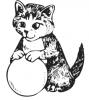 katten_11