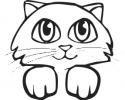 katten_12