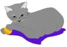 katten_18