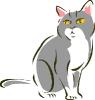 katten_19