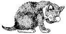 katten_24