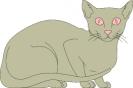 katten_31