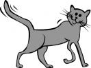 katten_33