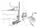 katten_35