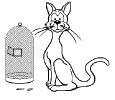 katten_43