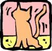 katten_48