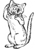 katten_7