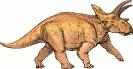 Anchiceratops_dinosaur