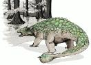 Ankylosaurus_2