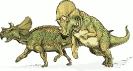 Avaceratops_dinosaur