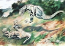 Dryptosaurus_fighting