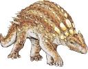 Minmi_paravertebra_dinosauria_