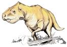 Prenoceratops_dinosaur