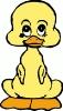 baby_duck