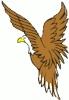 bald_eagle_small
