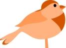 bird_rotund