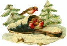 birds-sandal