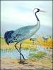 Crane_3