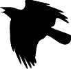 crow_flying_up